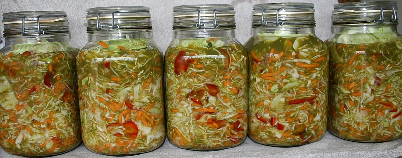 Fermented vegetables at home